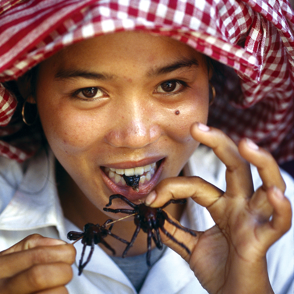 Man Eating Bugs: The Art and Science of Eating Insects book image