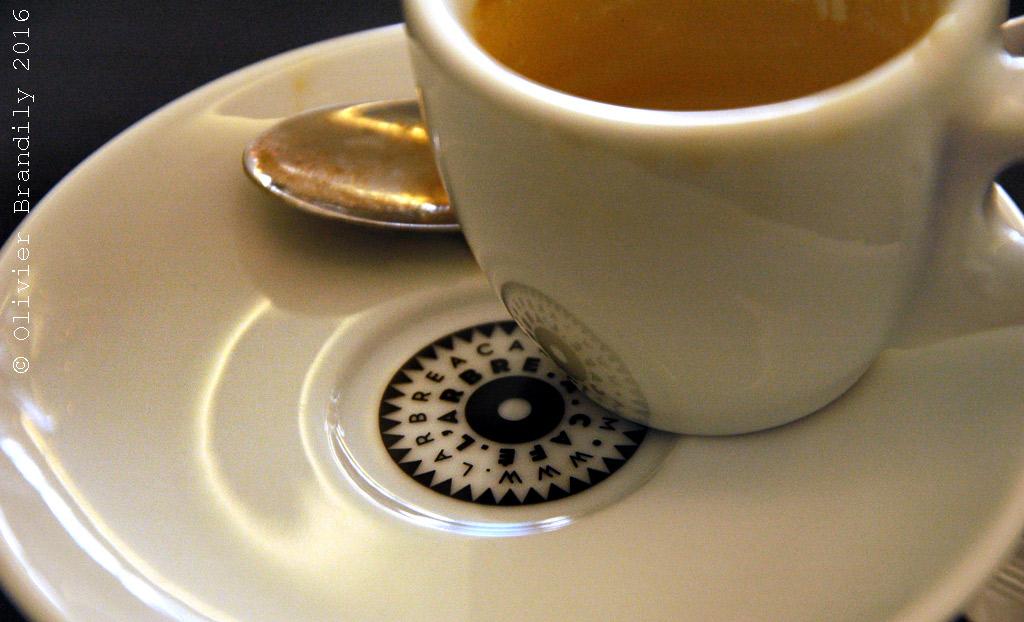 Arbre-a-cafe1