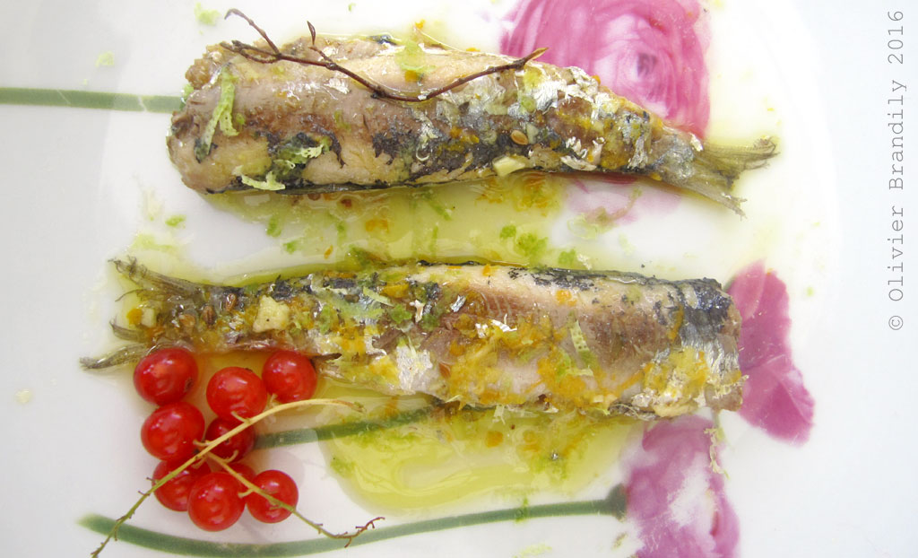 SardinesLCAV1