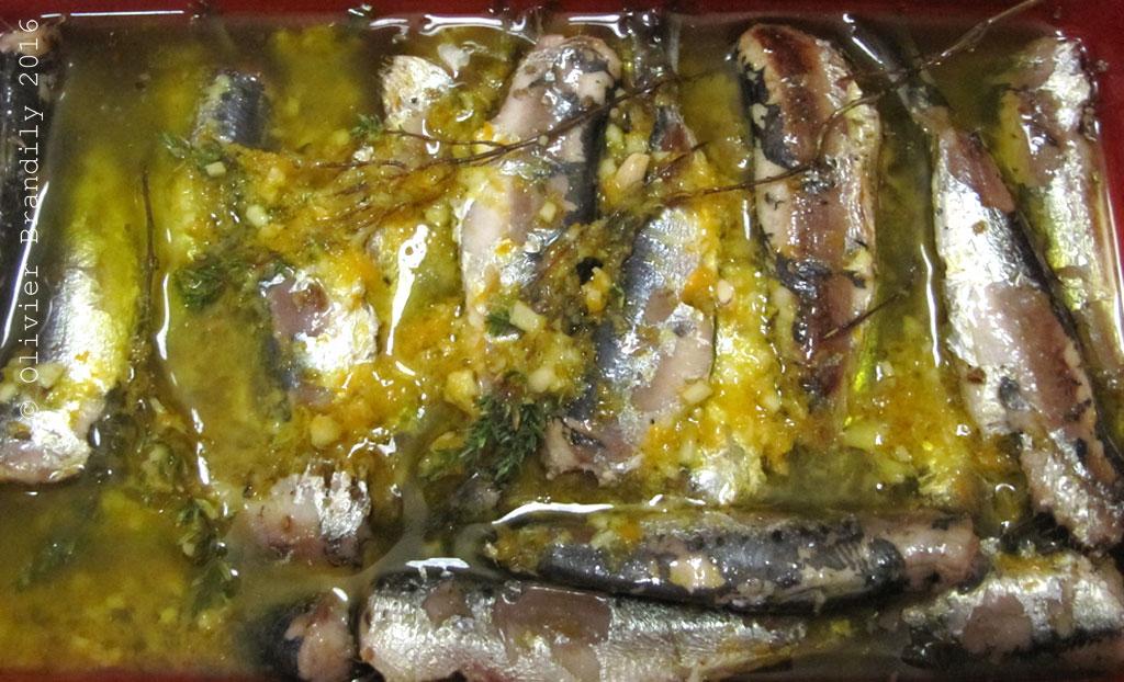 SardinesLCAV5