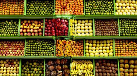 Caché au milieu des fruits et légumes